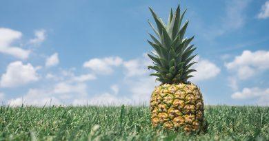 ananasul contine vitamina C