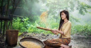 apa de orez este sanatoasa