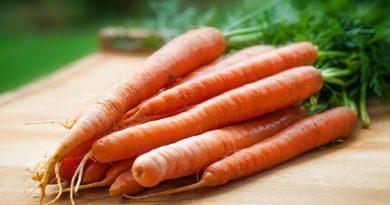 dieta cu morcovi este eficienta