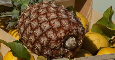 apa cu lamaie si ananas este benefica