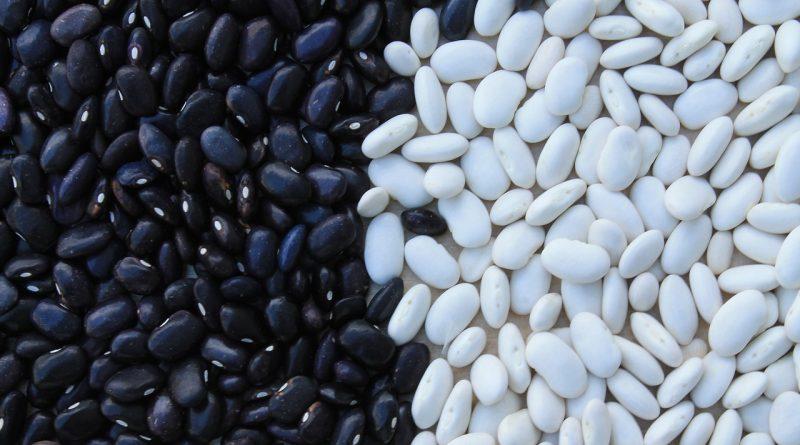 dieta cu fasole neagra
