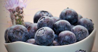 dieta purpurie