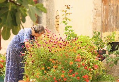 Boala Alzheimer – ce trebuie sa stii