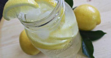 limonada probiotica