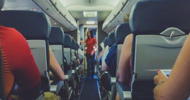 dieta stewardeselor