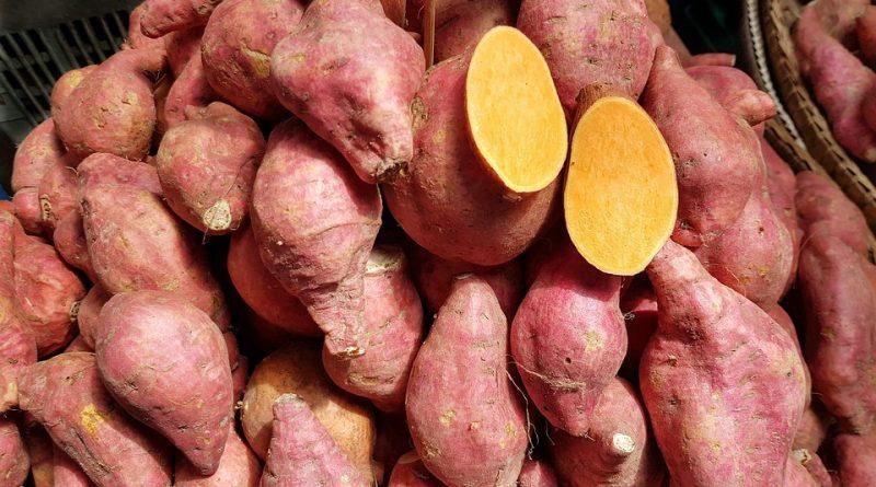 sucul de cartofi dulci